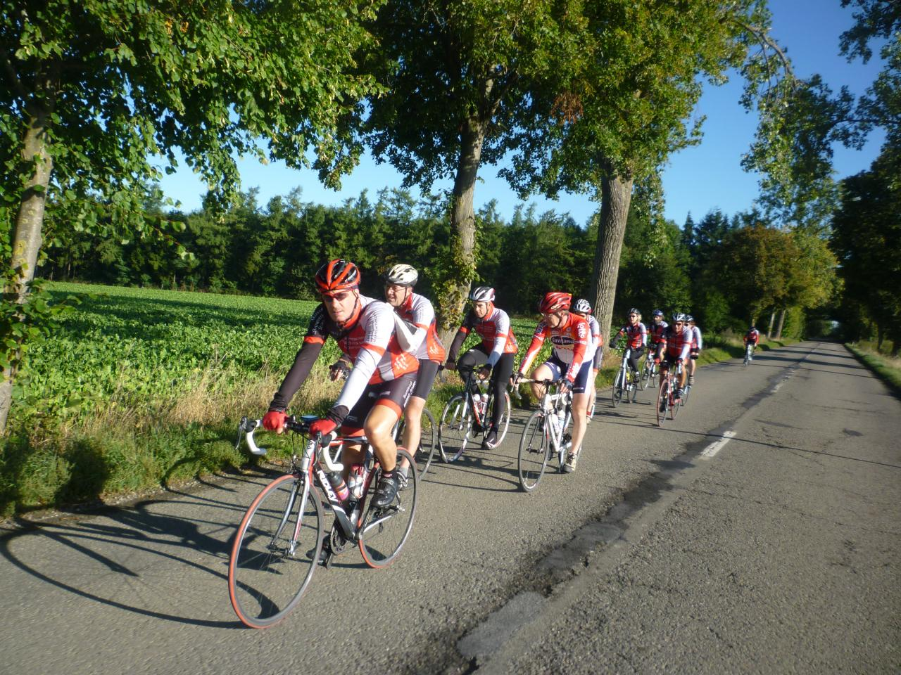 Allure soutenue les cyclos d'Hasselt!